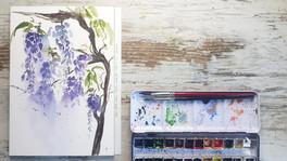 Loose watercolor Wisteria