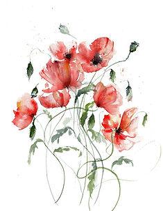 poppies_web.jpg