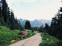 Paisagem bucólica de montanhas e floresta. No centro da imagem há um caminho de pedras.