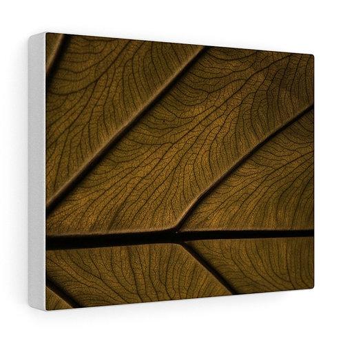 Custom Brown Leaf Canvas