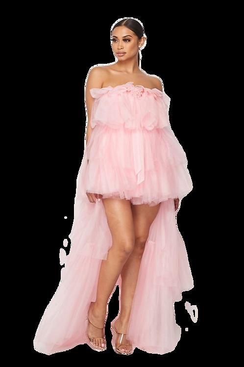 Tulle Multi-Layer Dress