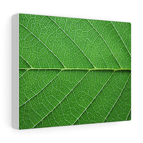 Custom Green Leaf Canvas
