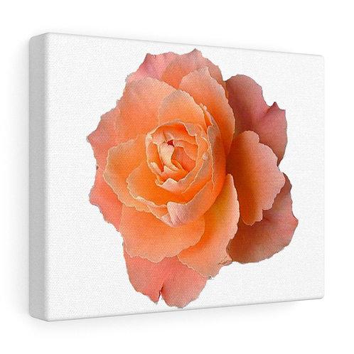 Custom Rose Canvas Wrap