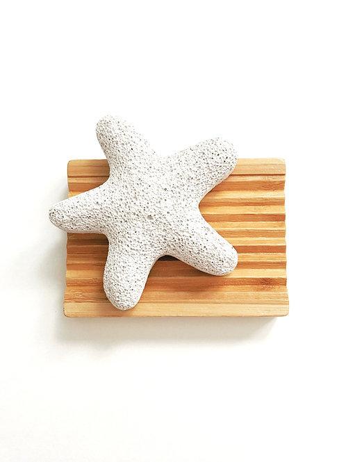 Starfish Pumice