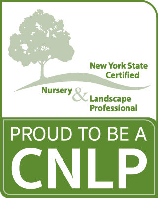 CNLP Badge