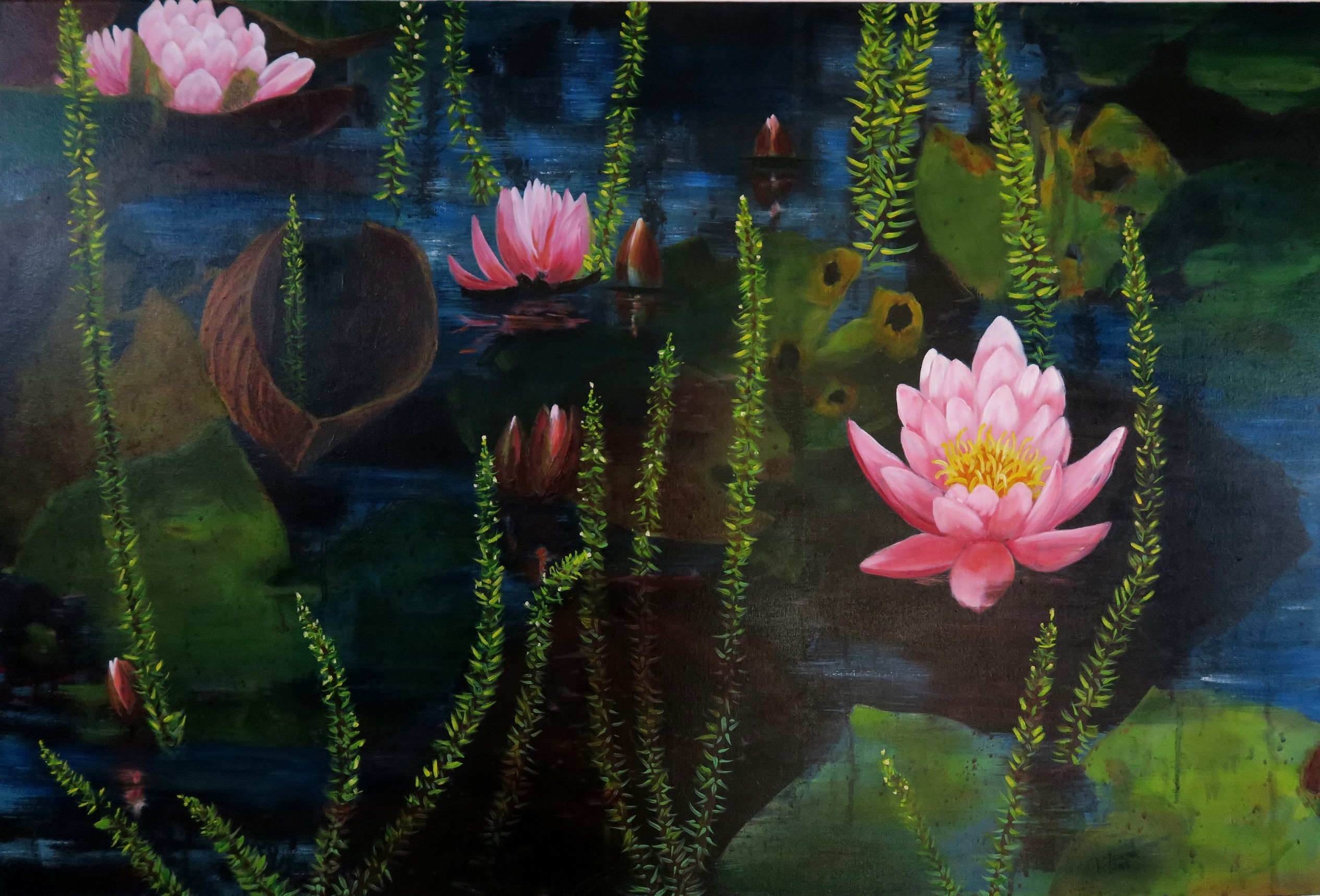 Waterlilies at Botanic Gardens -Sold