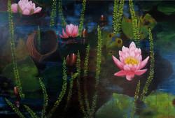 Waterlillies at Botanic Gardens -