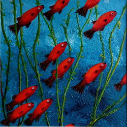 Red Wag Platys