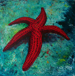 Red Starfish - SOLD