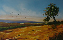 Crows Over Yellow Field - SOLD