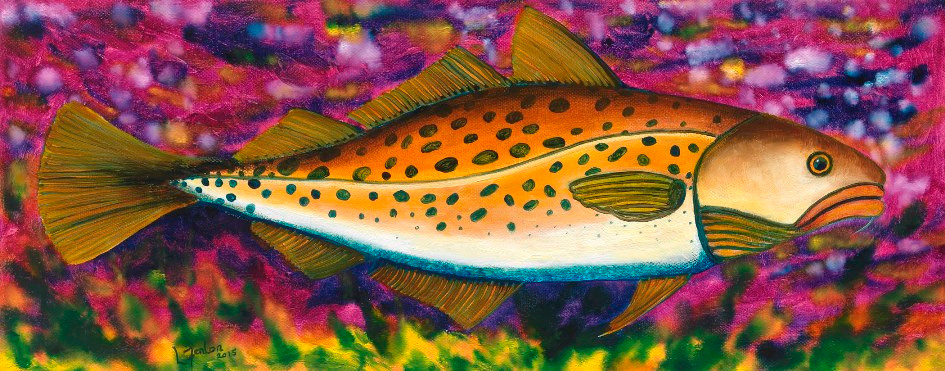 """""""Fed up Cod"""" oil on canvas"""