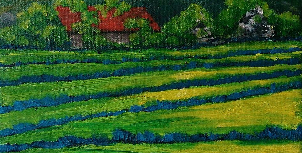 Original - Irish Cottage - Summer Bloom