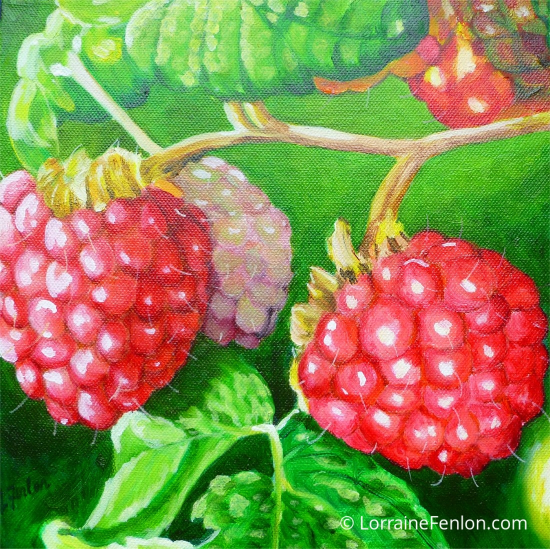 Rubus Drupelets 25 x 25cms €325