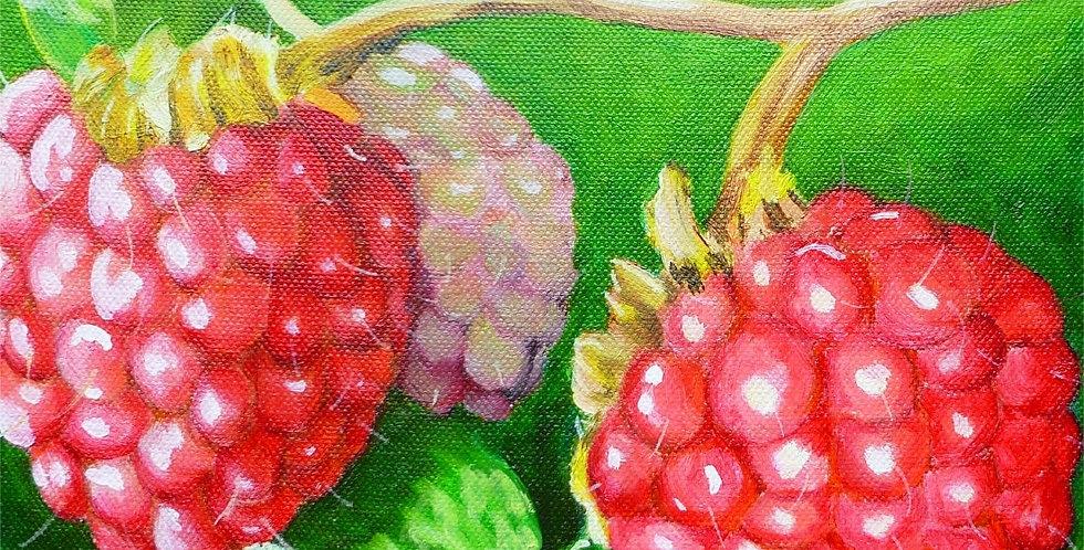 Art Card - Rubus Drupelets