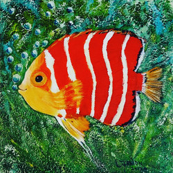"SOLD ""Peppermint Angelfish"""
