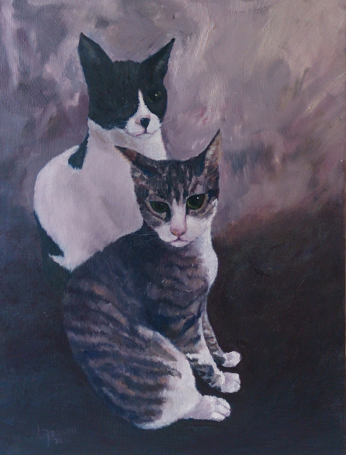Abu Dhabi Cats - SOLD