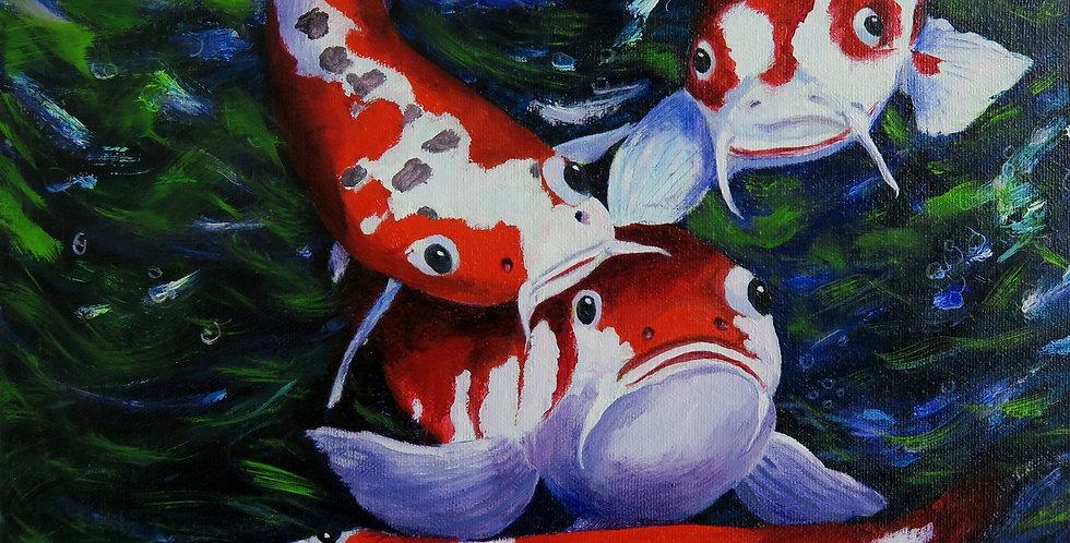 """Art Print of """"Red Koi - Not Coy"""""""