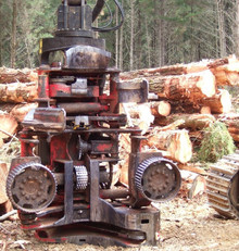 Growing interest in the wood processing sector