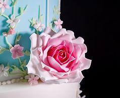 Pink Sugar Rose Cake Training Class