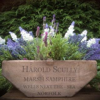 Marsh Samphire Norfolk Trug Prop Hire