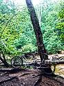 """Radtour in die """"Dresdner Heide"""""""