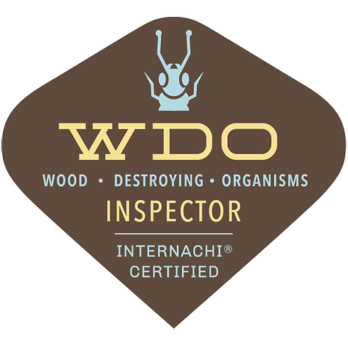 Home Inspections | Mold Inspections | Termite Inspections | Sewer Scope Inspections | Radon Testing | Radon Inspection