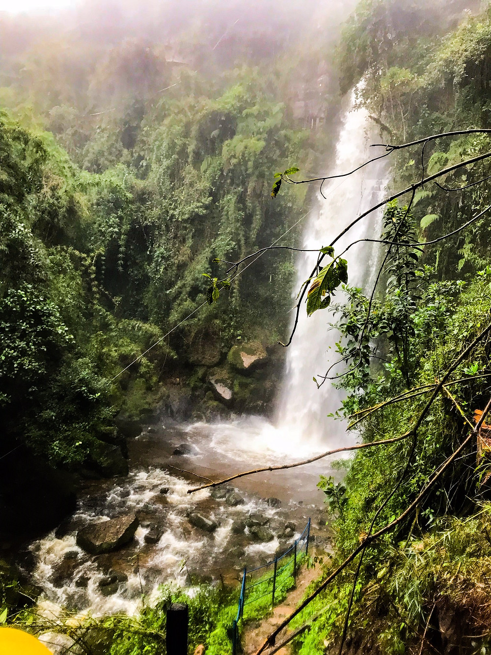The La Chorrera Waterfalls