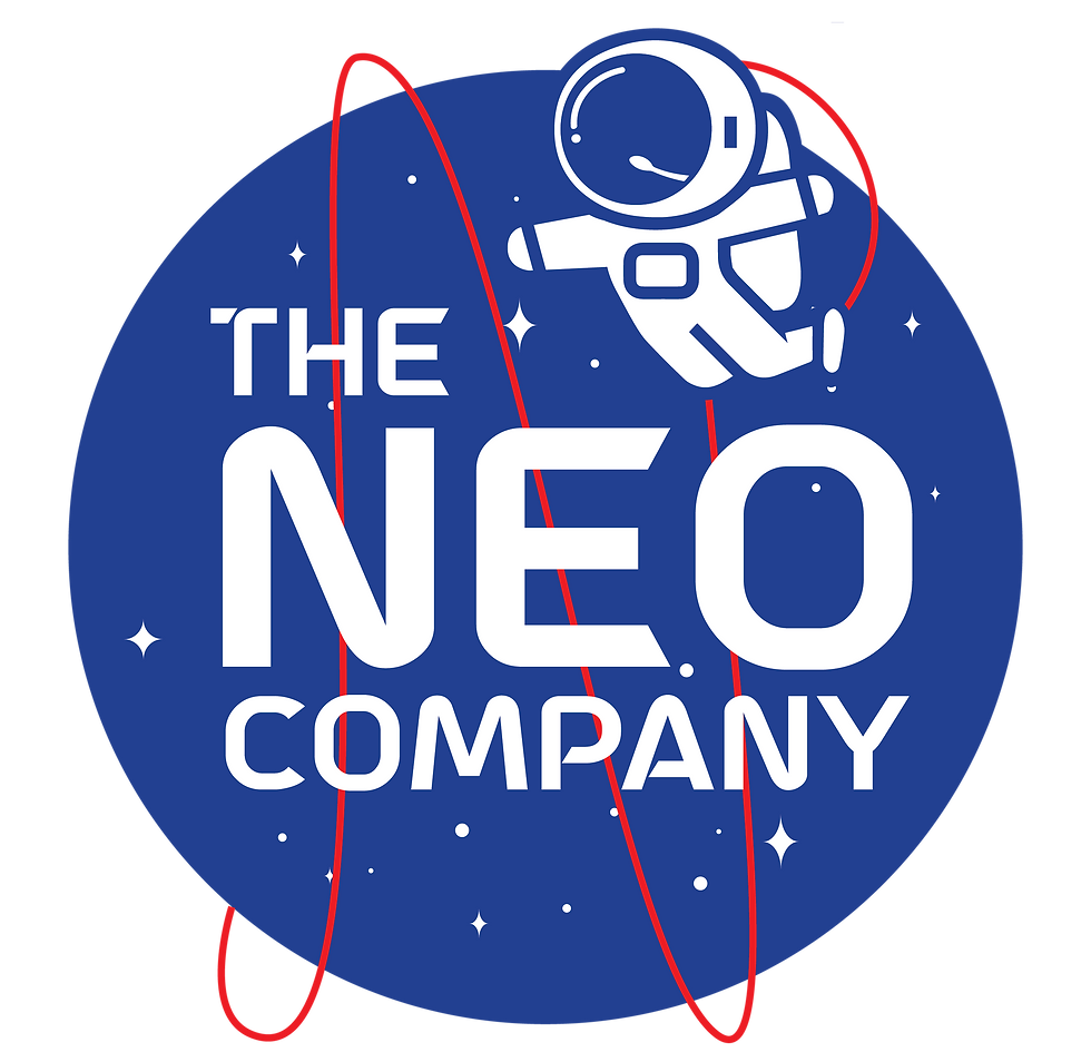 The Neo Company Website Design Ageny in Los Angeles