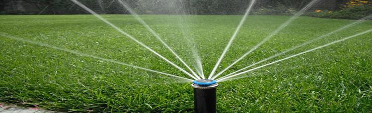 Irrigation-Photo-1231-2-1.jpg