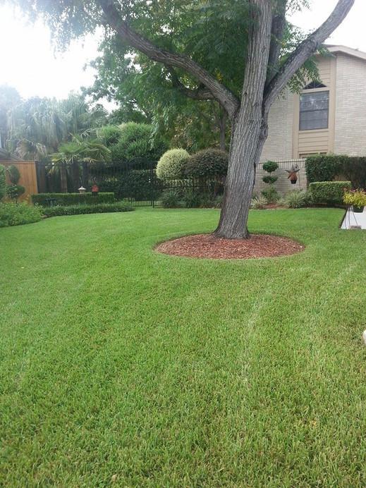 Lawn-Maintenance-Image-5-1.jpg
