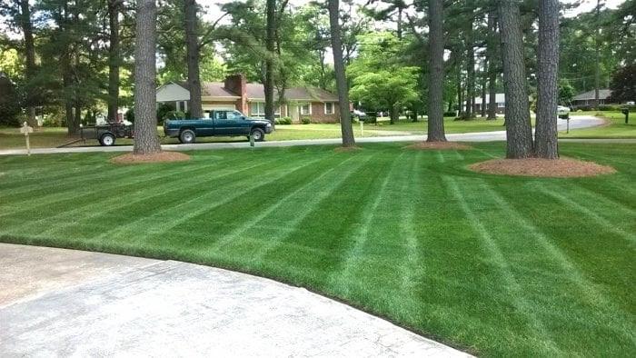 Lawn-Maintenance-Image-2-1.jpg