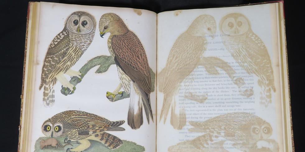 """Masters in Conservation"" Event: Karen Zukor on Rare Book Conservation"
