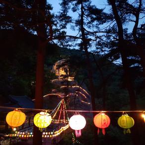 불기2565년 부처님오신날 봉축행사를 원만히 회향하였습니다.