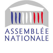 Mission parlementaire pour examiner la situation des Français de l'étranger
