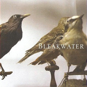 BLEAKWATER - Bleakwater
