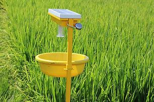 solar trap.jpg