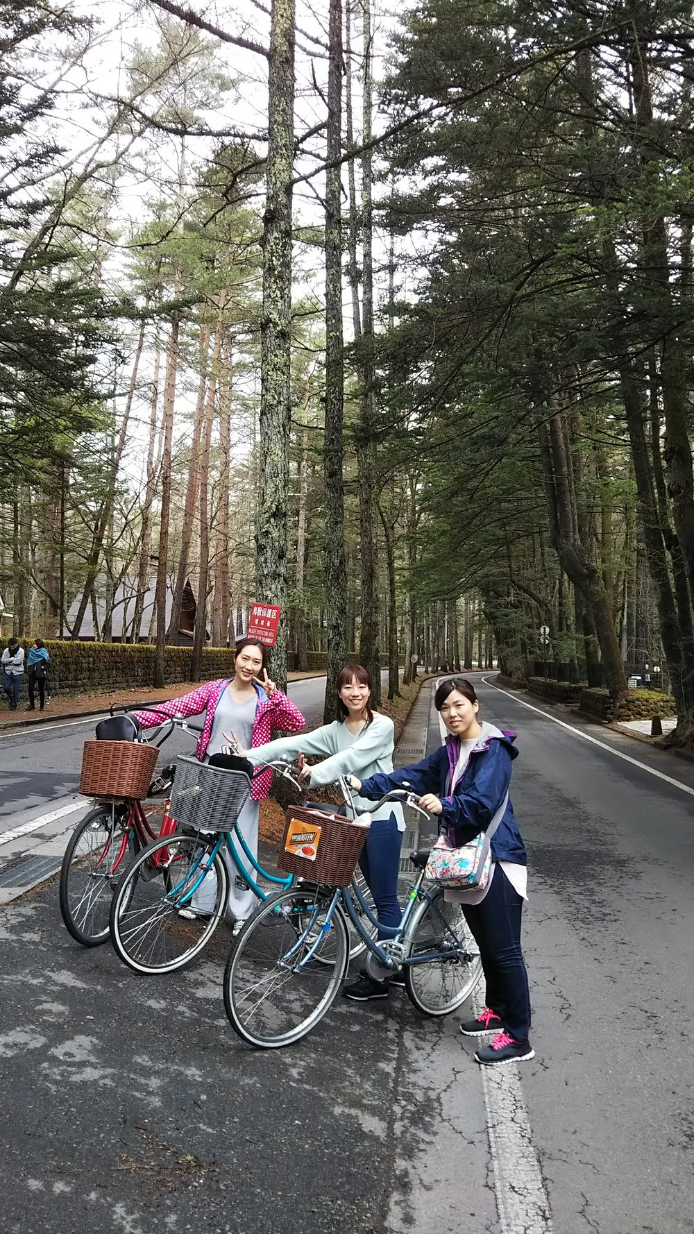 軽井沢サイクリング 三笠通り