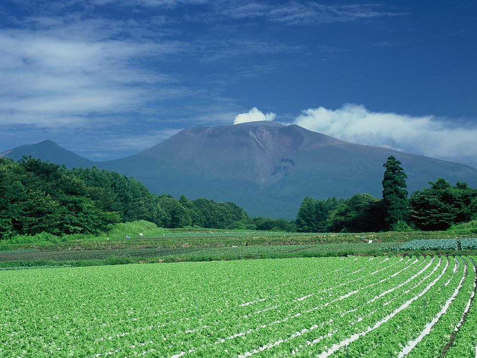 浅間山.png