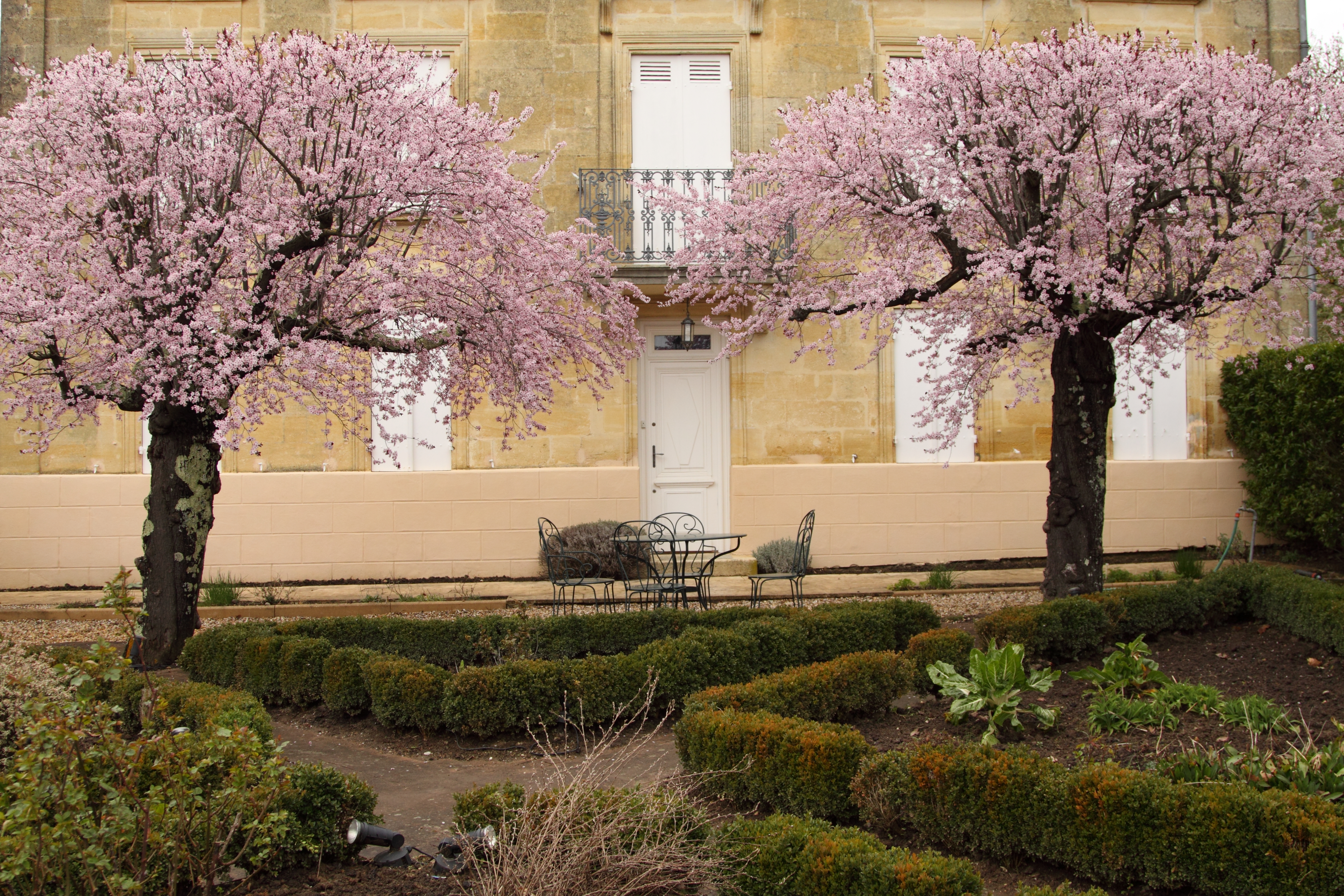 Castillon in Bloom