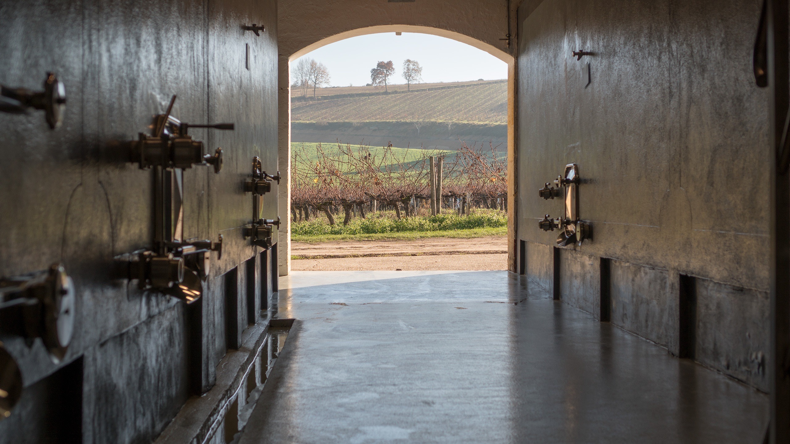 From the Winery