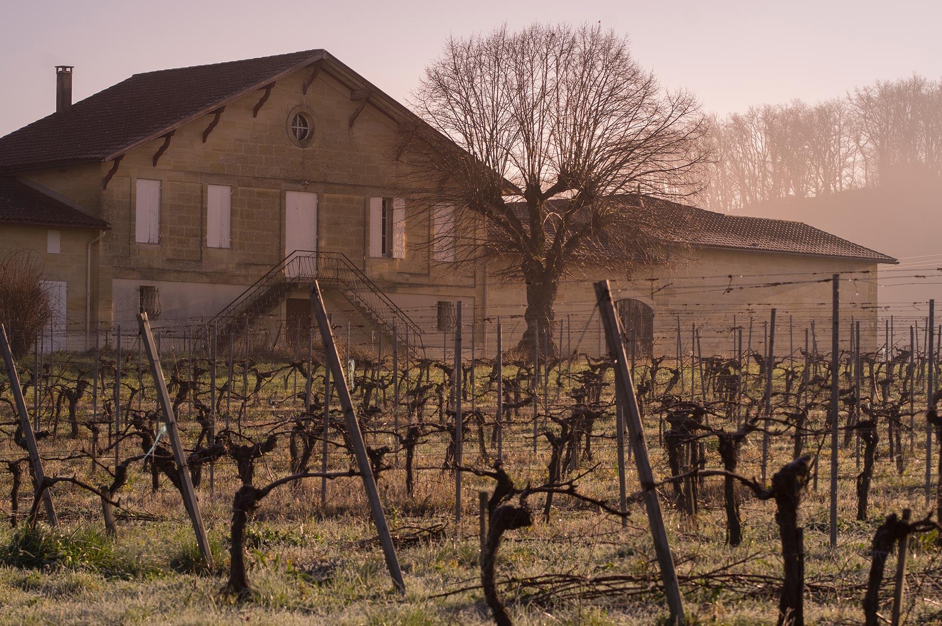 A Misty Morn at Château de Colombe