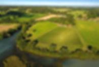 Windsor Great Park Vineyard32.jpg