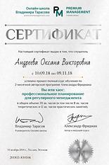 2018 Андреева Вы или Хаос.png