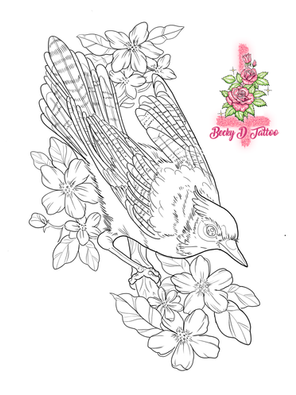 BLUE JAY FLASH 1.png
