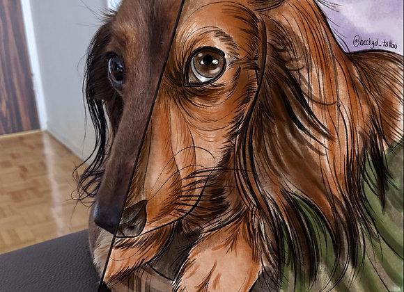 #ToonMe Digital Portrait PETS