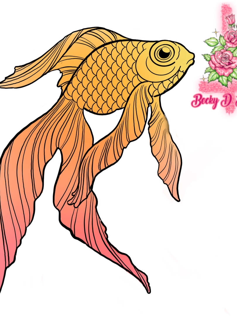 Goldfish Colourblock B