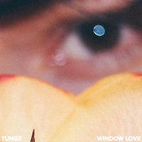 tungz window love.jpg