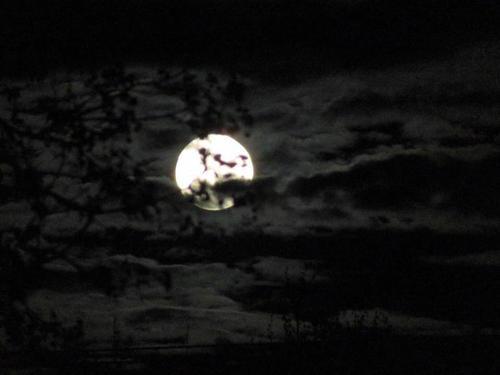 Moon rising through the clouds