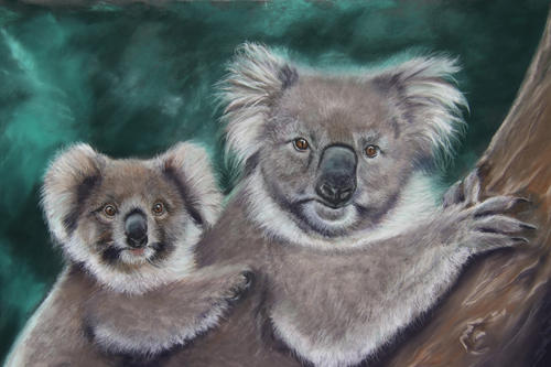 """Koala's in Focus """"Survivors"""""""