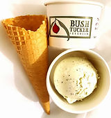 Bushtucker Icecream